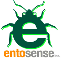 ENTOMOPHAGY FOR A HEALTHY FUTURE