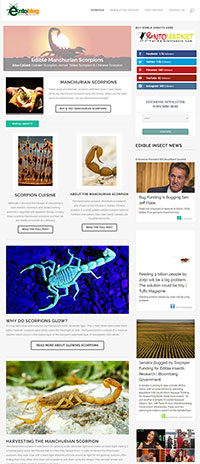 Scorpion Newsletter
