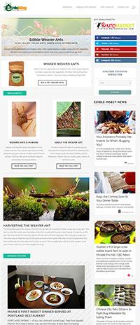 Weaver Ant Newsletter
